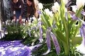25 d'abril. Dia internacional contra la violència cap a les dones