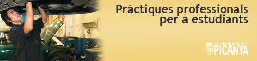 bnr_practiques_professionals