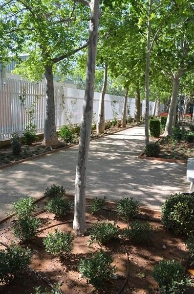 Renovaci i ordenaci de la jardineria i la il luminaci for Renovacio oficina de treball