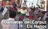 bannerdansetes2015elsnanos