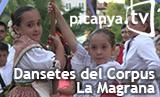 bannerdansetes2015lamagrana
