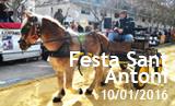 Festa de Sant Antoni