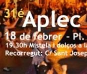 bnr_31_aplec_dansa_2017