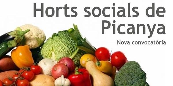 anunci_activita_horts_socialst