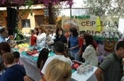 Rastro Solidari 2012 P5270177