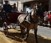 La comissió de Sant Antoni manté viva la tradició
